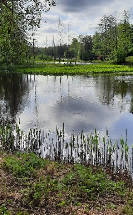Päästeameti foto: järv